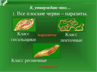 Я, утверждаю что… 1. Все плоские черви – паразиты. Класс сосальщики Класс лен...