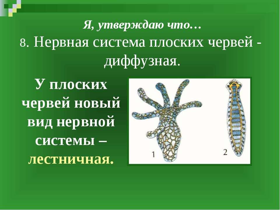 Я, утверждаю что… 8. Нервная система плоских червей - диффузная. У плоских че...