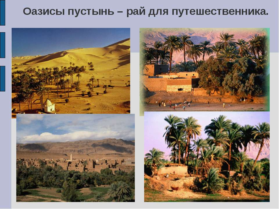 Оазисы пустынь – рай для путешественника.