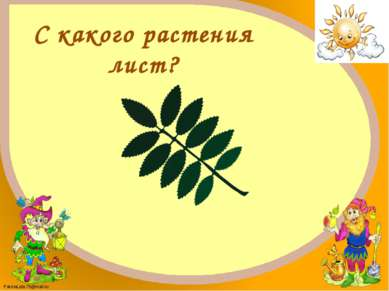 Рябина FokinaLida.75@mail.ru