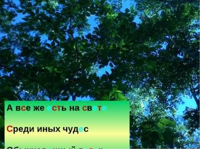 А все же есть на свете Среди иных чудес Обыкновенный ветер, Обыкновенный лес.