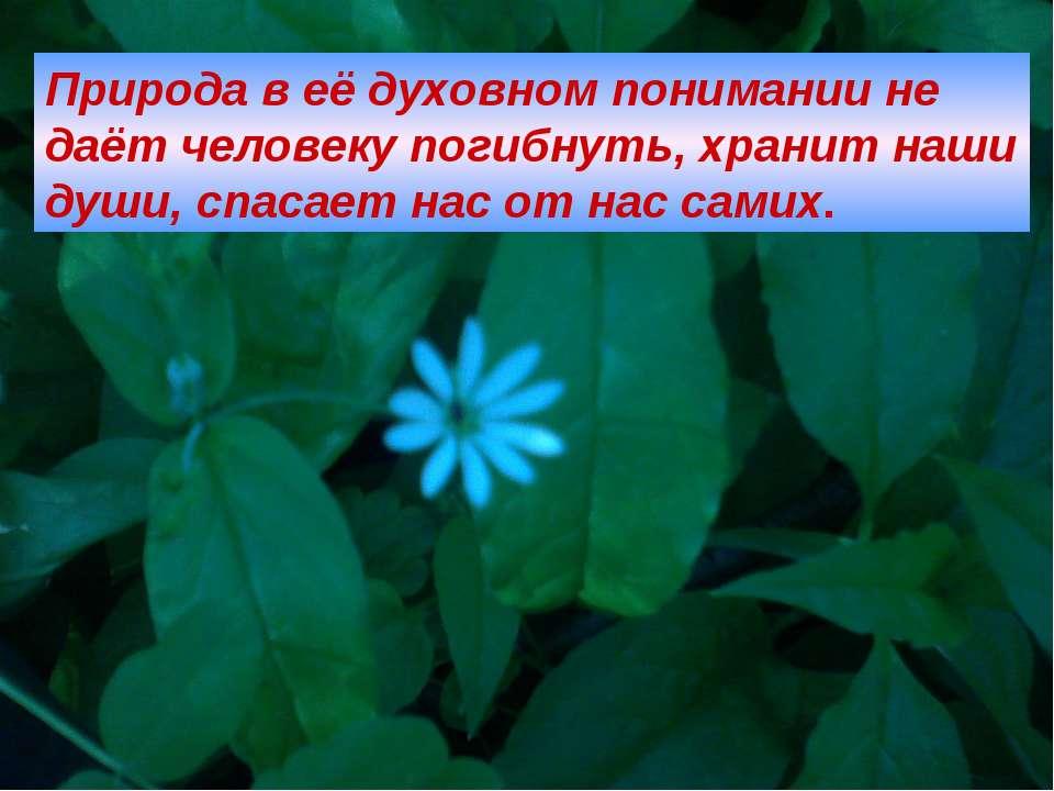 Природа в её духовном понимании не даёт человеку погибнуть, хранит наши души,...