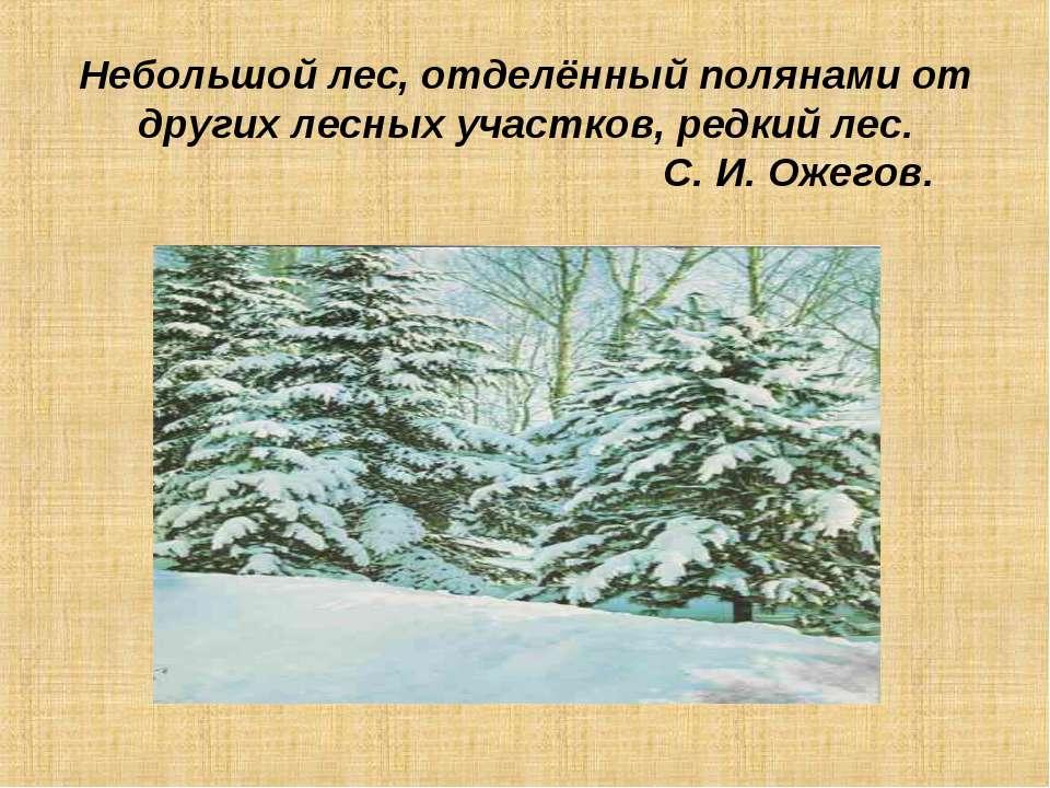 Небольшой лес, отделённый полянами от других лесных участков, редкий лес. С. ...