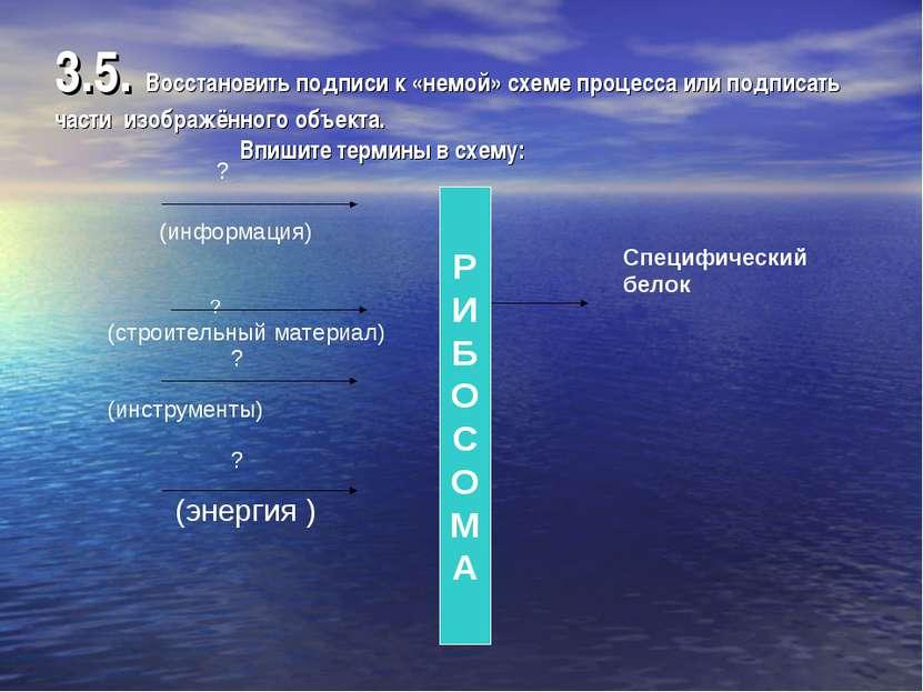 3.5. Восстановить подписи к «немой» схеме процесса или подписать части изобра...