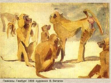 Павианы. Гамбург. 1908 художник В. Ватагин