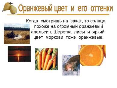 Когда смотришь на закат, то солнце похоже на огромный оранжевый апельсин. Шер...