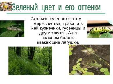 Сколько зеленого в этом мире: листва, трава, а в ней кузнечики, гусеницы и др...
