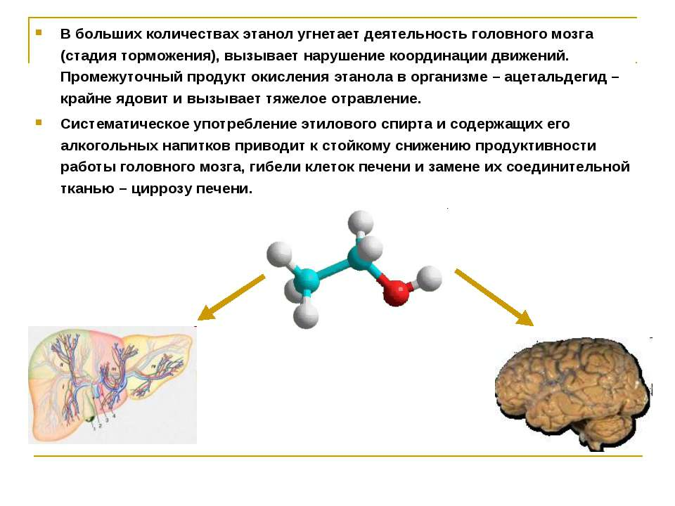 В больших количествах этанол угнетает деятельность головного мозга (стадия то...
