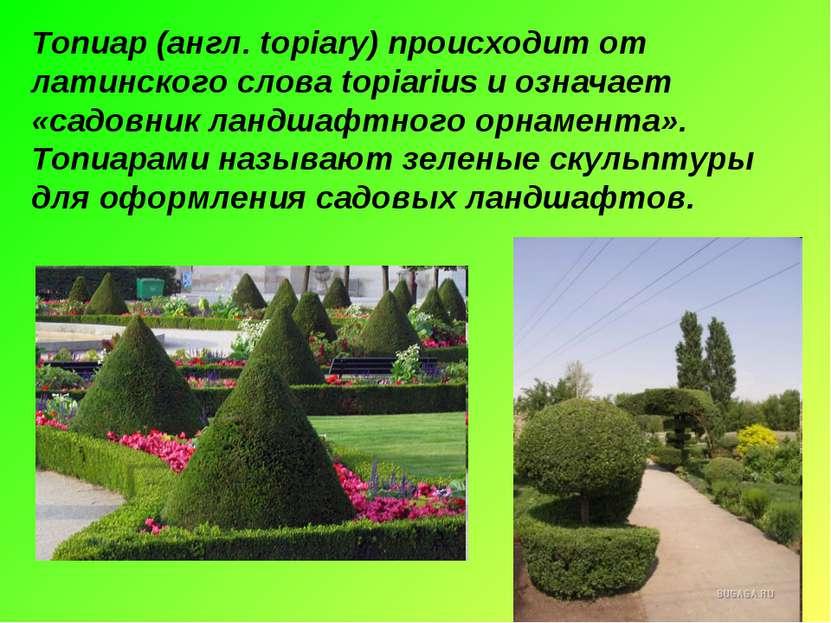 Топиар (англ. topiary) происходит от латинского слова topiarius и означает «с...