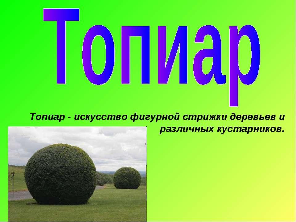Топиар - искусство фигурной стрижки деревьев и различных кустарников.