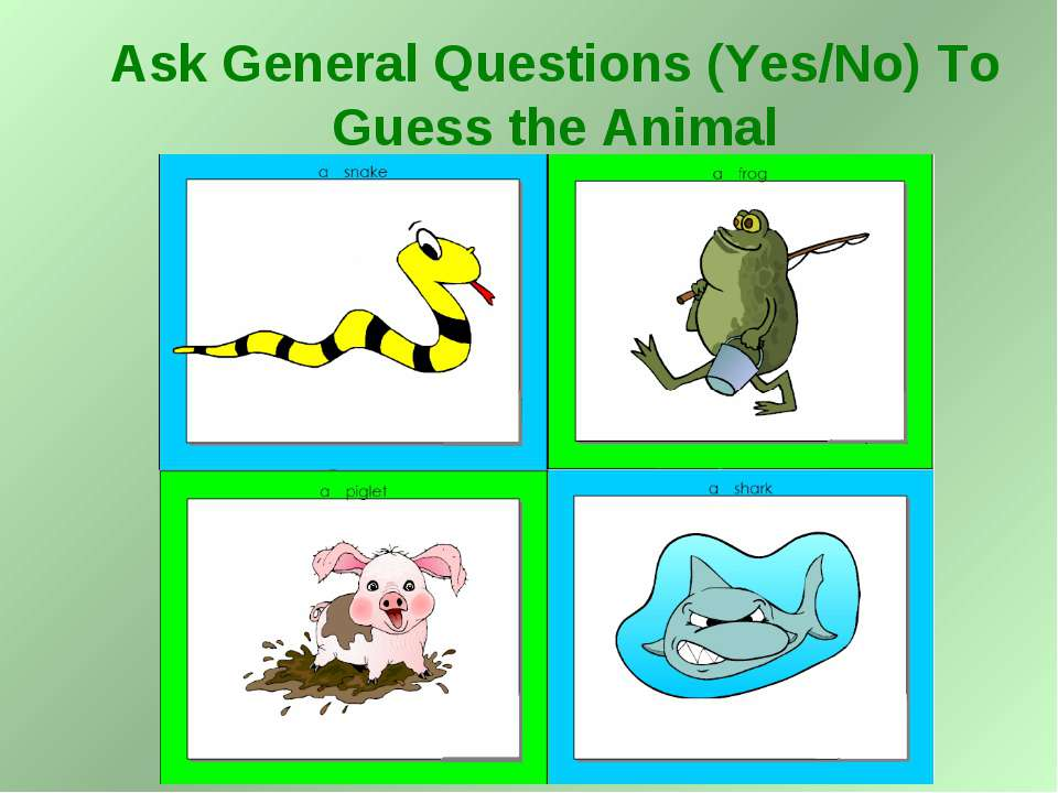 Ask General Questions (Yes/No) To Guess the Animal