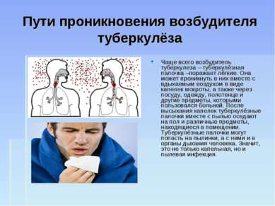 Пути проникновения возбудителя туберкулёза Чаще всего возбудитель туберкулеза...