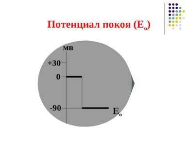 Потенциал покоя (Ео) 0 -90 +30 мв Ео