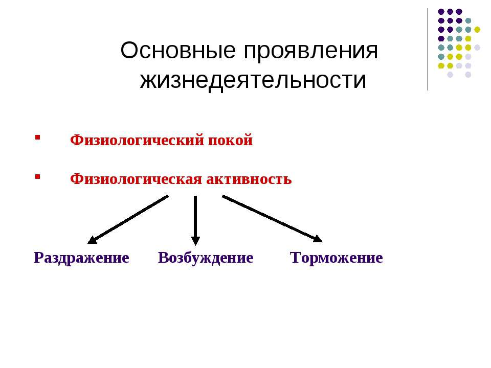 Основные проявления жизнедеятельности Физиологический покой Физиологическая а...