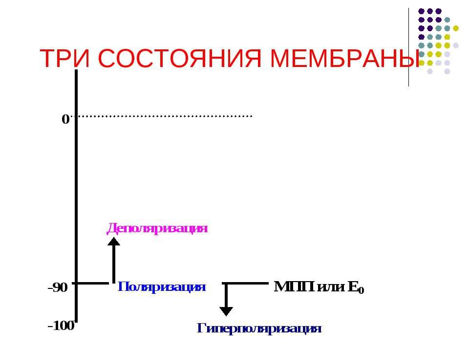 ТРИ СОСТОЯНИЯ МЕМБРАНЫ