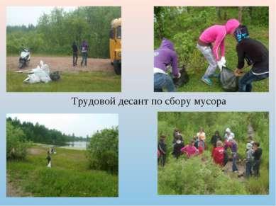 Трудовой десант по сбору мусора