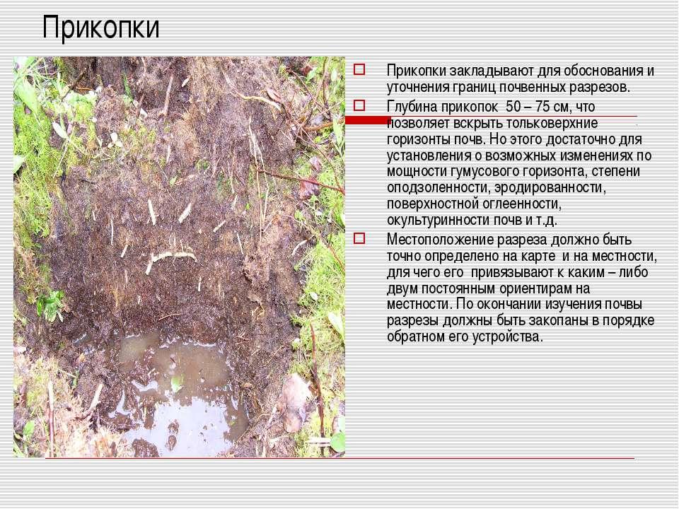 Прикопки Прикопки закладывают для обоснования и уточнения границ почвенных ра...