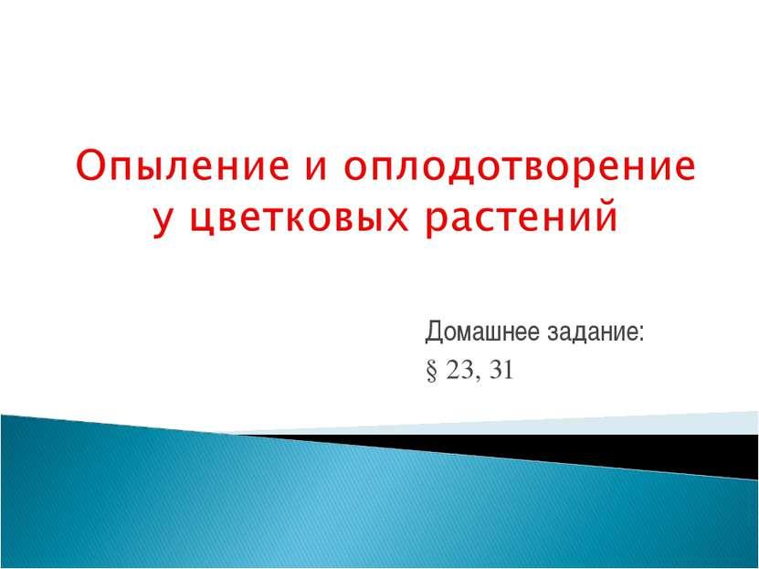 Домашнее задание: § 23, 31