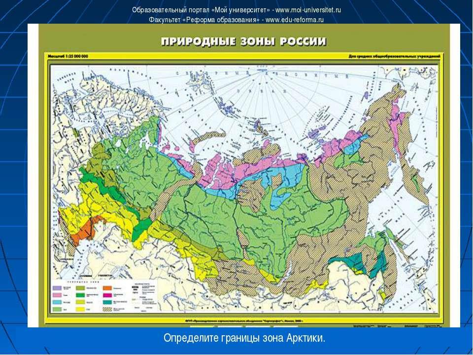 Определите границы зона Арктики. Образовательный портал «Мой университет» - w...