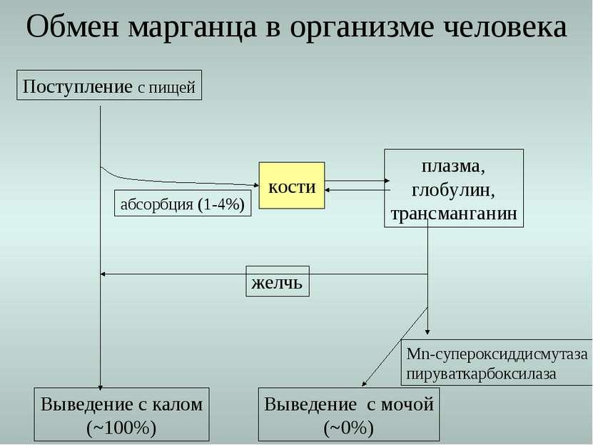 Обмен марганца в организме человека Поступление с пищей Выведение с калом (~1...