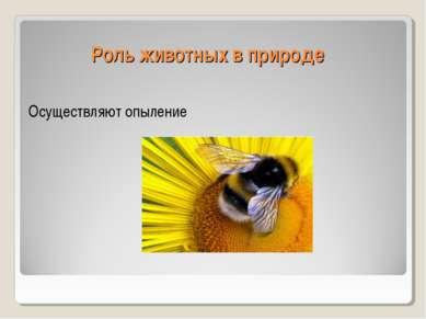 Роль животных в природе Осуществляют опыление