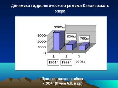 Прогноз - озеро погибнет к 2004г (Кучин А.П. и др). Динамика гидрологического...