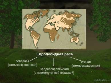 Европеоидная раса северная (светлоокрашенная) южная (темноокрашенная) Среднее...