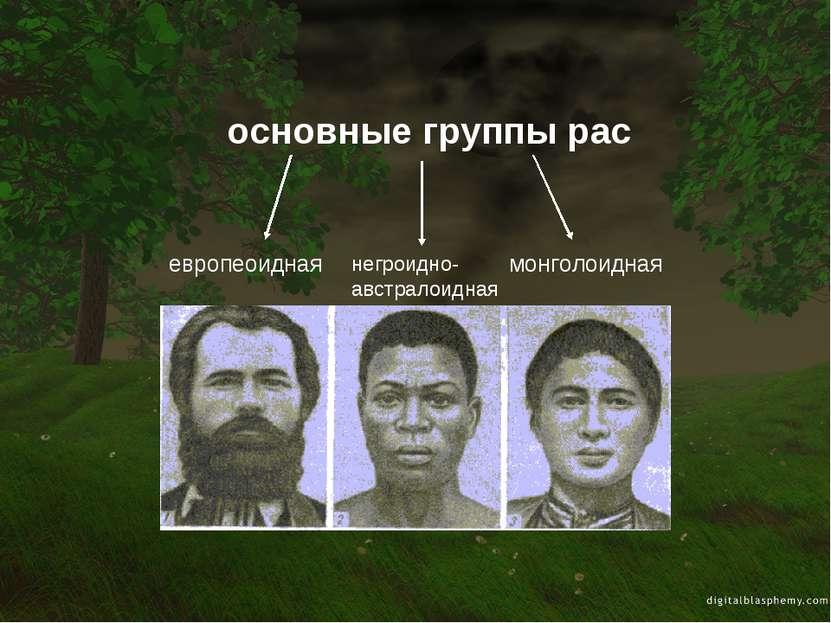 европеоидная монголоидная основные группы рас негроидно-австралоидная