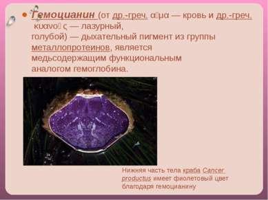 Лимфатическая система Часть сосудистой системы, которая дополняет венозную и ...
