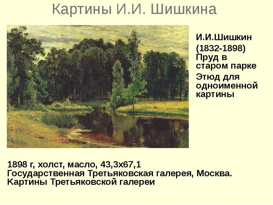 Картины И.И. Шишкина 1898 г, холст, масло, 43,3x67,1 Государственная Третьяко...
