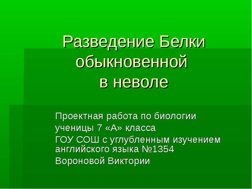 Разведение Белки обыкновенной в неволе Проектная работа по биологии ученицы 7...