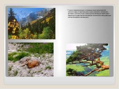 С целью сохранения редких и исчезающих видов представителей животного мира на...