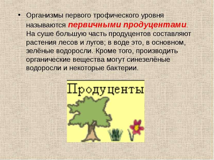 Организмы первого трофического уровня называются первичными продуцентами. На ...