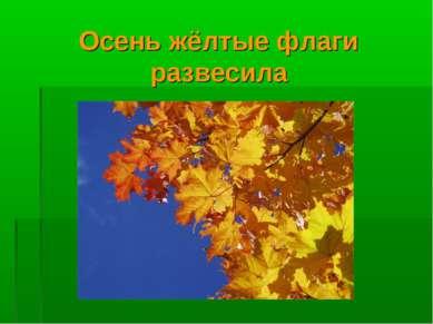 Осень жёлтые флаги развесила