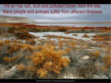 The air has salt, dust and pollutant blown from the sea. Many people and anim...