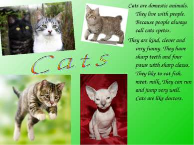 Cats are domestic animals. They live with people. Because people always call ...