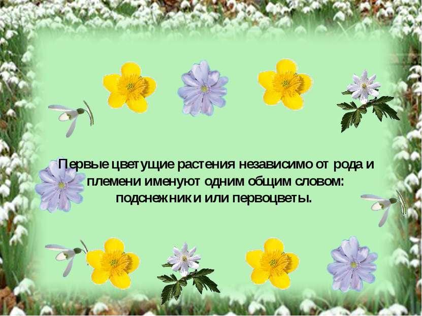 Первые цветущие растения независимо от рода и племени именуют одним общим сло...