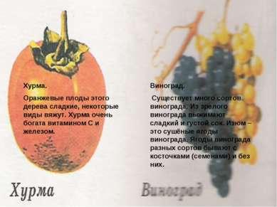 Зачем мыть Хурма. Оранжевые плоды этого дерева сладкие, некоторые виды вяжут....