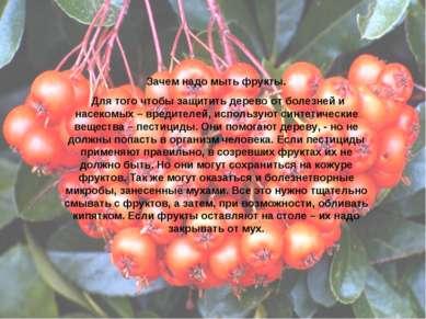 Зачем надо мыть фрукты. Для того чтобы защитить дерево от болезней и насекомы...