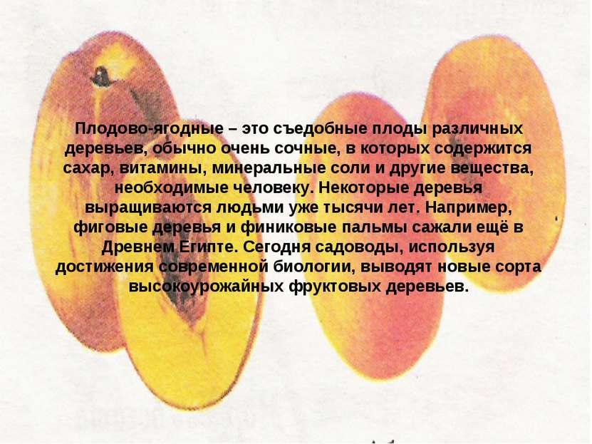Плодово-ягодные – это съедобные плоды различных деревьев, обычно очень сочные...