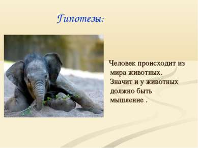 Человек происходит из мира животных. Значит и у животных должно быть мышление...