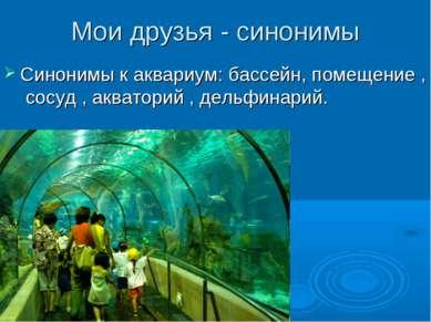 Мои друзья - синонимы Синонимы к аквариум: бассейн, помещение , сосуд , акват...