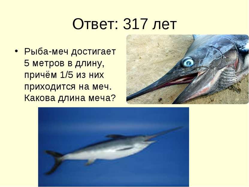 Ответ: 317 лет Рыба-меч достигает 5 метров в длину, причём 1/5 из них приходи...