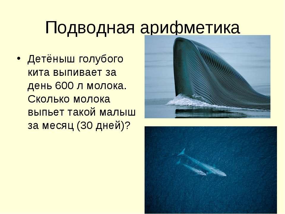 Подводная арифметика Детёныш голубого кита выпивает за день 600 л молока. Ско...