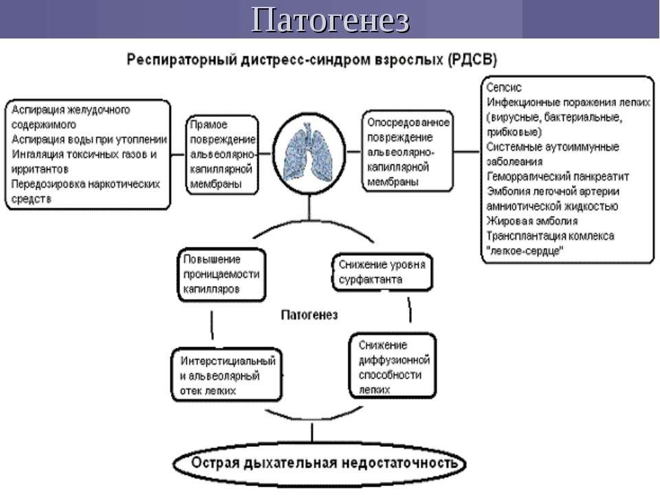 Реферат респираторный дистресс синдром взрослых 6745