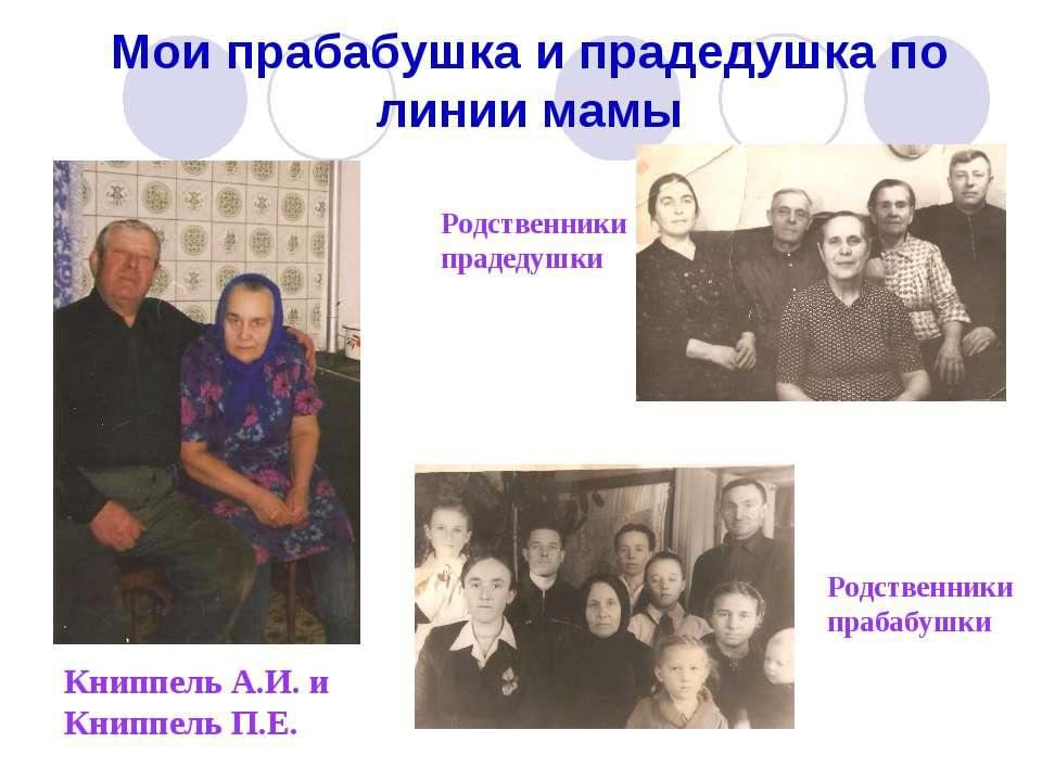 Мои прабабушка и прадедушка по линии мамы Книппель А.И. и Книппель П.Е. Родст...