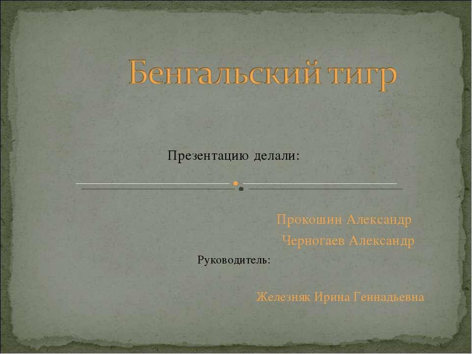 Презентацию делали: Прокошин Александр Черногаев Александр Руководитель: Желе...