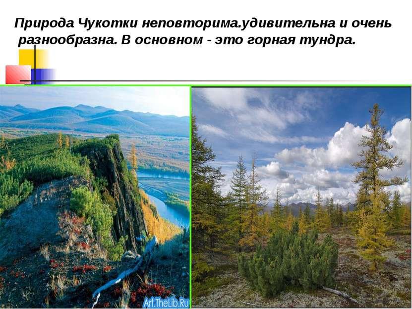 Природа Чукотки неповторима.удивительна и очень разнообразна. В основном - эт...