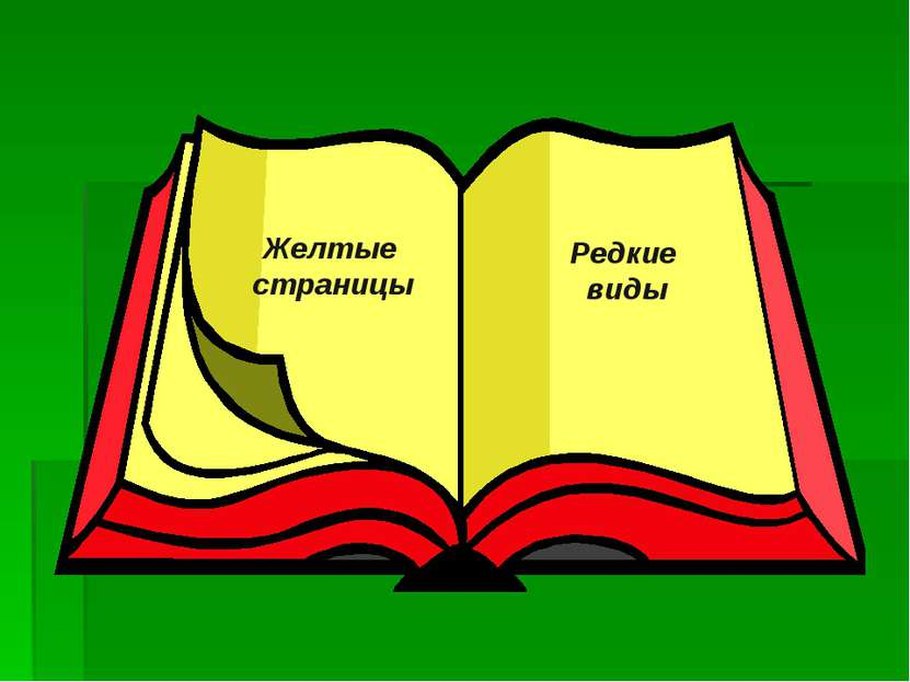 Желтые страницы Редкие виды