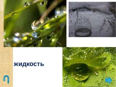 р. Днестр , Украина